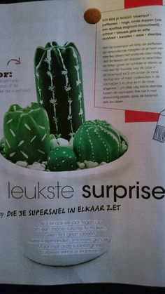Cactus surprise uit Vriendin Santa Gifts, Cactus, December, Presents, Gift Wrapping, Holidays, Christmas Ornaments, Holiday Decor, Creative