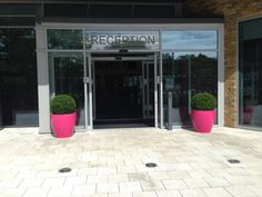Pink Cirkik Planter framing an entrance way available from @plantfinderpro https://plantfinderpro.com/couture-planters/