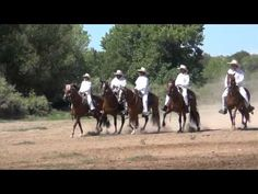 Check out the Rio Grande Peruvian Horse Club performing a riding demonstration at the Las Golondrinas Summer Festival in Santa Fe, NM.