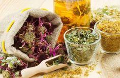 Народные средства от гастрита с повышенной или пониженной кислотностью - самые эффективные травяные рецепты