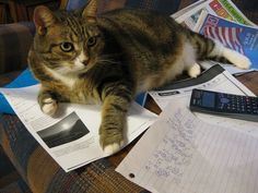 My love libby, she don't like it when I study..