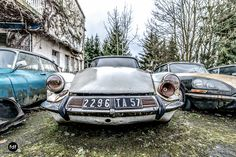 Citroen Ds, Maserati, Cars And Motorcycles, Vintage Cars, Abandoned, Aquarium, Automobile, Sport, Mini