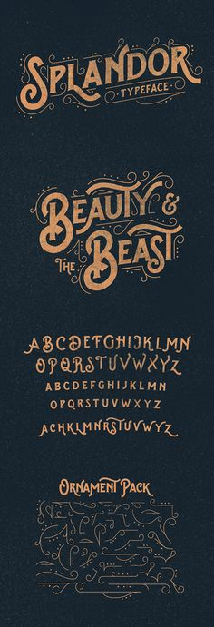 Splandor Typeface by Ilham Herry, via Behance. This is gorgeous.