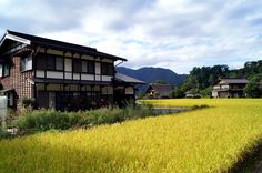 THE COMPLETE ITINERARY: THE BEST OF JAPAN IN TWO WEEKS BY RAIL shirakawago