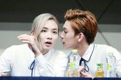 Just kiss him... #SEVENTEEN #Jeonghan #Joshua #kpop