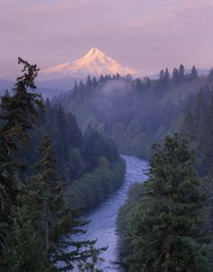 The north face of Mt. Hood looking down the White Salmon River from Washington State. This will be my new home river in April!