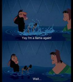 Yay! I'm a llama again! Wait.....