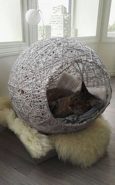 Haustier cute & super cat house ideas - indoor outdoor Your One Year-Old's Development The first Cats Wallpaper, Cat House Diy, Diy Cat Bed, House For Cats, Diy Bed, Outdoor Cats, Indoor Outdoor, Cat Cave, Super Cat