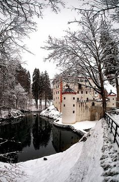 Castle Sneznik in Slovenia Beautiful Castles, Beautiful Buildings, Beautiful Places, Great Places, Places To See, Interesting Buildings, Chateaus, Medieval Castle, Kirchen
