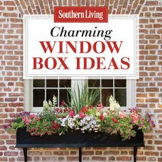 Add charm to your home with window boxes.