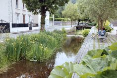 It has probably crossed your mind to hire a professional to landscape your yard. Rain Garden, Terrace Garden, Water Garden, Urban Landscape, Landscape Design, Garden Design, Retention Pond, Parque Linear, New Urbanism