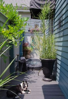 Take a Virtual Stroll Through 5 Beautiful New Orleans Homes — Southern Style #PatioFurnitureLivingQuarters