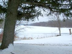 LOWELL, MICHIGAN ~ Bank Owned Home & 10 Acres with View of the Flat Ri... - LASTBIDrealestate.com