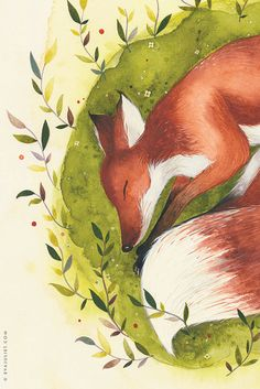 The Sleepy Fox - 8x10 Animal watercolor collection via Etsy