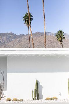 Palm Springs ✖️// PALM SPRINGS // Muse by Maike // http://musebymaike.blogspot.com.au  Instagram: @musebymaike  #MUSEBYMAIKE