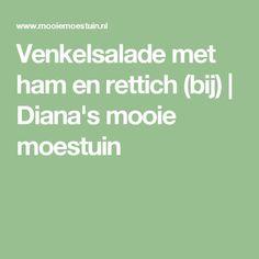 Venkelsalade met ham en rettich (bij) | Diana's mooie moestuin