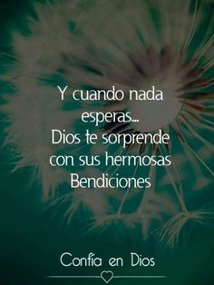 Amén y muchas bendiciones Gudelia santana I Love You God, God Loves You, God Is Good, Gods Love Quotes, Quotes About God, Quotes To Live By, Christian Pictures, Christian Quotes, Healing Words