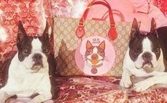Gucci célèbre le nouvel an chinois avec une nouvelle collection