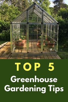 This summer, I accepted Palram Applications' invitation to test drive their Snap & Grow® 6×8 Silver Greenhouse. This would be my first foray into greenhouse gardening and, given my gardening experience, I really thought it would be a snap, muchRead this artice