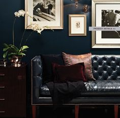 Like the dark wall with the framed pictures. Like the black edged framed picture. Plus the domed sofa.