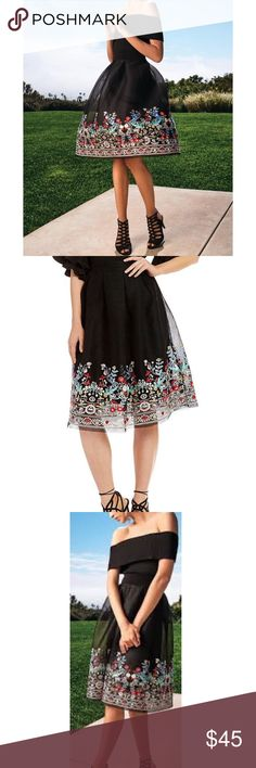 🎀 Gianni Bini Embroidered Skirt Stunning embroidered mesh skirt from Gianni Bini. Lined. Shell and lining 100% Polyester. 🚨Bundle and get 15% off! 🚨 Gianni Bini Skirts