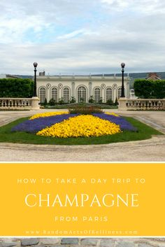 Wine tasting in Champagne from Paris