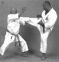 Soto sukui uke, ashi tsukami, chūdan gyaku zuki Karate, Wrestling, Statue, Lucha Libre, Sculptures, Sculpture