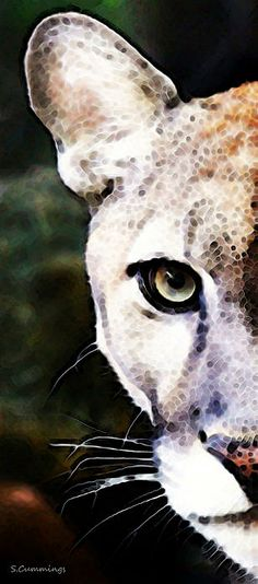 Florida Panther Art - Hungry Painting by Sharon Cummings - Florida Panther Art - Hungry Fine Art Prints and Posters for Sale