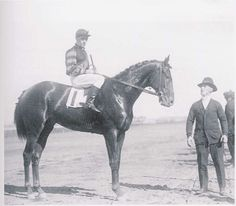Man O' War, one of the greatest racehorses of all time