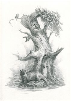 Otters and kingfishers. Pencil on paper by Vera Zowadova.