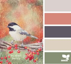 Coral, sage, taupe