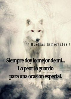 Geronimo, I Love Dogs, Inspirational Quotes, Wisdom, Fantasy, Reading, Ronaldo, Wolves, Angels