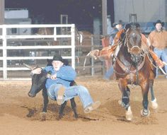 Courtesy/RM PHOTOS --  Garrett Oates of La Vernia takes the steer by the horns for one wild ride during the Texas Youth Rodeo in Gonzales. Garrett placed fifth in the state finals.
