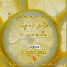 LA FANTASIA IN CUCINA SI TINGE DI GIALLO: il Limoncello! Il primo contest-evento de Le ricette del bimby e....molte altre! *CRI*: