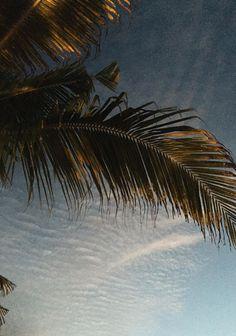 Punta Mita. – Sincerely Jules