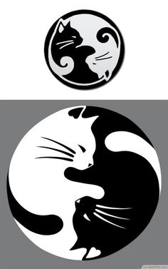 Potential best friend tattoo. Cat tattoo. Yin and yang