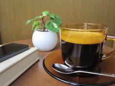 趣のある琥珀色のガラスが印象的なアデリア60のコーヒーカップ& ソーサー。陶器には見られない硝子越しに揺らめくコーヒーが ゆっくりとした時間と温かみを感じさせてくれます。 Nespresso, Coffee Maker, Kitchen Appliances, Tableware, Diy Kitchen Appliances, Home Appliances, Dinnerware, Drip Coffee Maker, Appliances