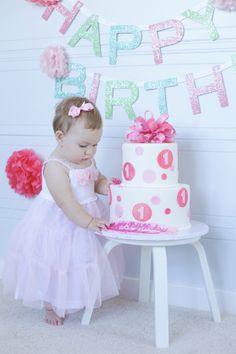 1-year-old birthday  |  renee marie photography