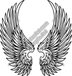 wings - Google Search