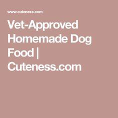 Vet-Approved Homemade Dog Food | Cuteness.com