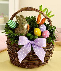 Easter Flowers: Arrangements & Bouquets Delivered for Easter 2020 Easter Plants, Easter Flowers, Easter Games, Easter Crafts For Kids, Easter Ideas, Easter Bunny Centerpiece, Easter Decor, Easter Gift Baskets, Easter Celebration