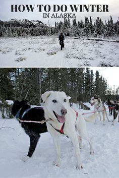 How to do winter in Alaska