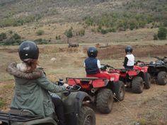 Visiting Pilanesberg Natiooonal Park - South Africa