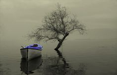 """"""" tranquility"""" by e&e photography on 500px"""