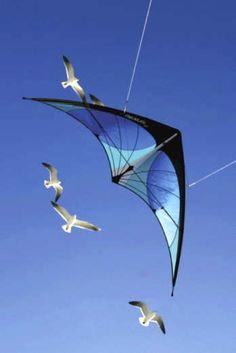 Beautiful - kites become art!