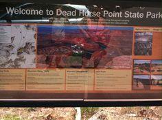 Dead Horse...