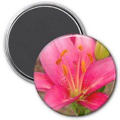 Pretty Pink Lily Refrigerator Magnet Refrigerator Magnets #zazzle #magnets #pink #lily #flowers #organizing #garden