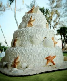 Shell cake white tan starfish
