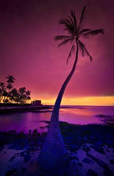 Dusk in The Big Island of Hawaii, United States. You wanna move to Hawaii permeantly? Foto Nature, All Nature, Amazing Nature, Beautiful Sunset, Beautiful World, Beautiful Places, Beautiful Scenery, Amazing Places, Big Island