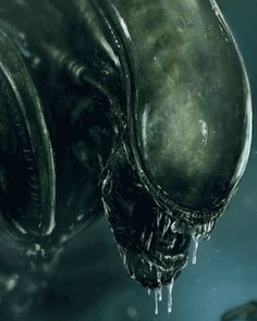 Alien Pictures, Alien Photos, Arte Alien, Alien Art, Alien Vs Predator, Sci Fi Horror, Arte Horror, Ahri Wallpaper, Giger Alien